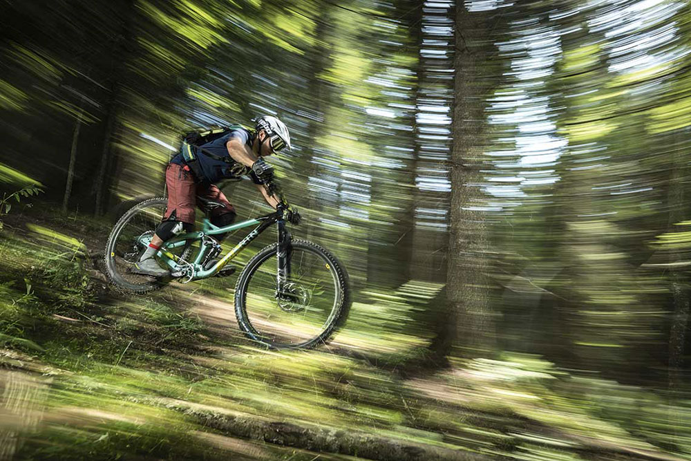 Marin Alpine Trail
