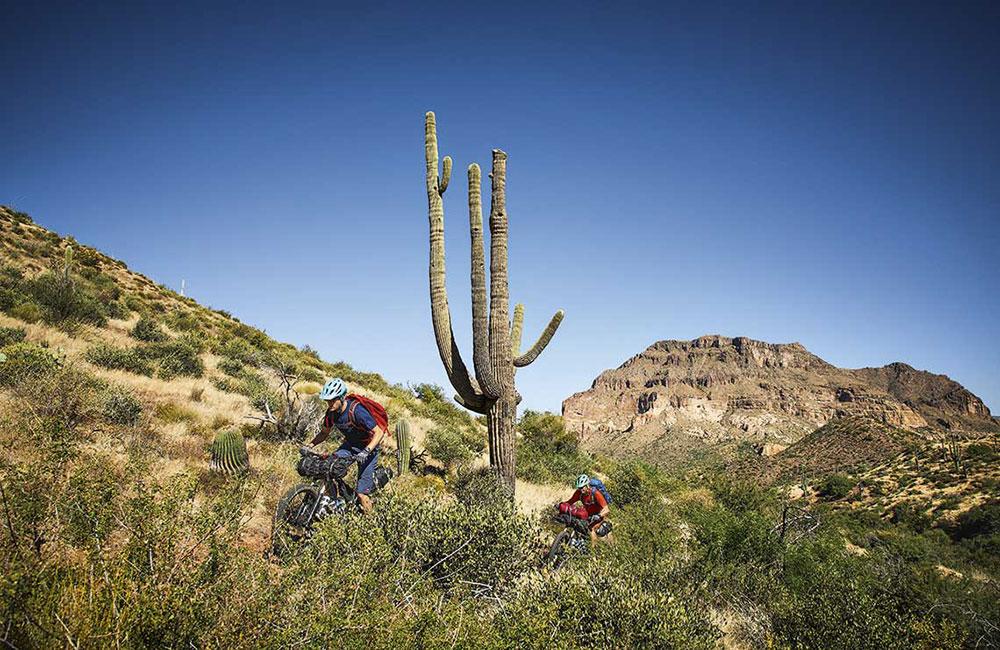 bikepacking_arizona