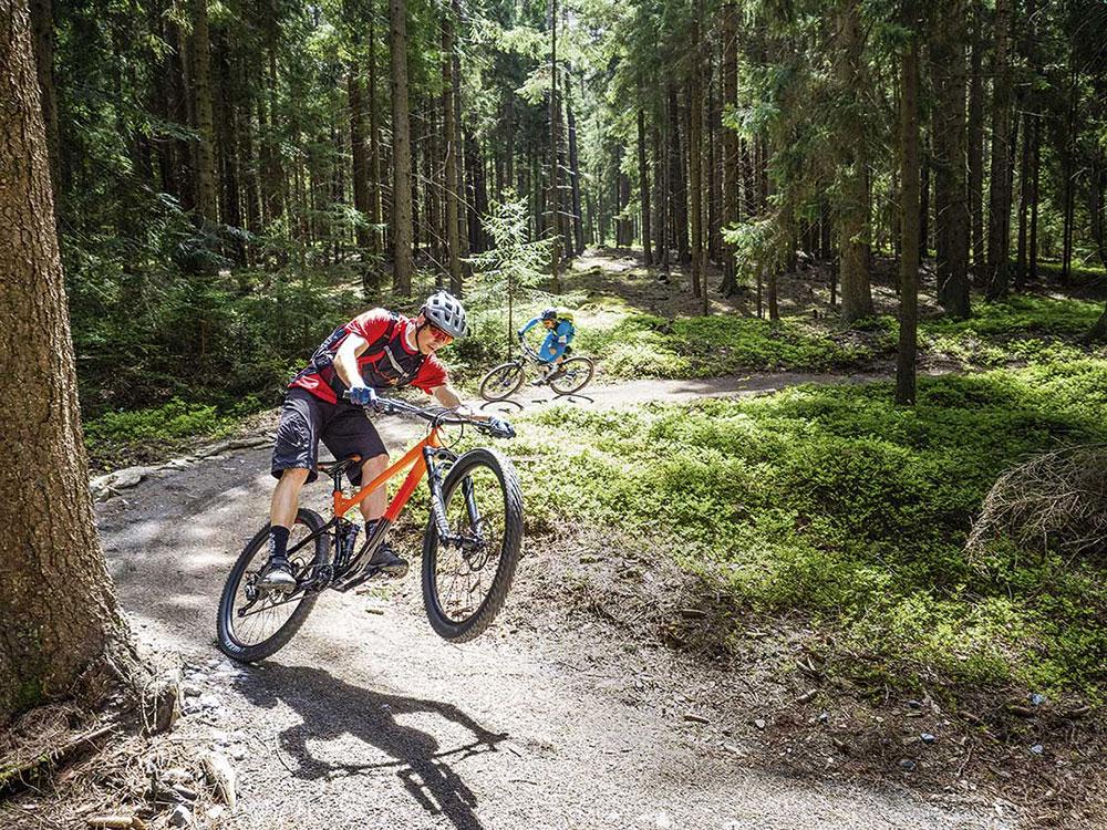 Cudne manowce. Test rowerów trailowych do 12 tys. złotych